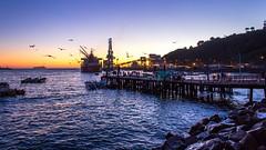 San Antonio (Danilo_Oliveira) Tags: chile puerto muelle san antonio t3i