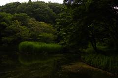 Firefly (Kazuaki_ISHIDA) Tags: