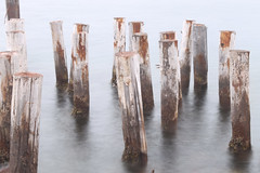 bell island sticks (Patrickjack) Tags: longexposure sticks bellisland