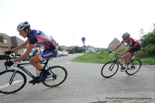 Geel Oosterlo  (244)