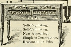 Anglų lietuvių žodynas. Žodis oversell reiškia v (oversold)  pardavinėti viršijant tiekimo galimybes 2 pergirti, perdėti; refl perdėti savo nuopelnus lietuviškai.