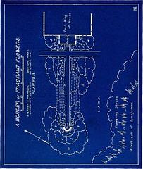 Anglų lietuvių žodynas. Žodis centaurea moschata reiškia <li>centaurea moschata</li> lietuviškai.