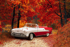 Autumn leaves (t.schwarze) Tags: photoshop oldsmobile oldtimer red leaves blätter rot rouge autumn herbst car auto diecast modellauto voiture vehicle composing model