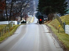 the long hill (Lana Pahl / Country Star Images) Tags: amishcountry ohioamish countrysideimages mycountryroad countrysidephotography
