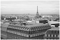 View from the roof of Galeries Lafayette, Paris (veronicajwilliams photography) Tags: veronicajwilliamsphotography veronicajwilliams insightmoments paris france europe canon canon5dmarkii canon2470mm canon2470mmf28l travelphotography travel travelling traveling galerieslafayette eiffel eiffeltower blackandwhite city cityscape view iconic history historical