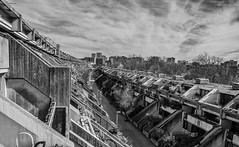 Concrete Skyline (handmiles) Tags: mono monochrome blackandwhite bw city architcture london building flats houses alexanderainsworthestate concrete outside high outdoor out sony sonya77mark2 sonya77m2 tamron tamron1024mm wideangle mileshandphotography2017