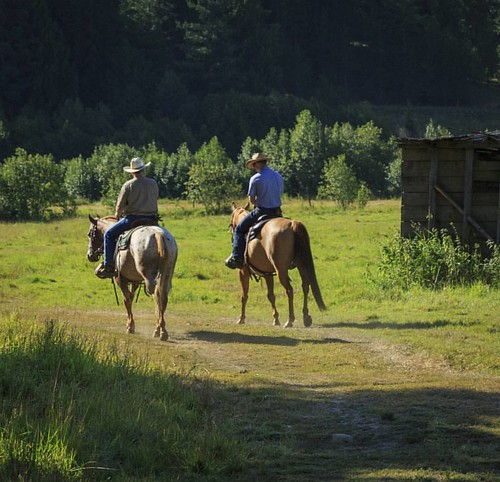 Who is ready for days like this? I sure am ready for sunshine,  green grass and horseback riding!  #wpguestranch #duderanch #guestranch #horsebackriding #ranchhorse #ranchvacation #ride #visitidaho #westernvacation #ranchlife #exploreidaho #experience #va