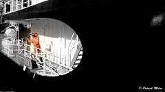 Abeille Bourdon - Brest harbour (patrick_milan) Tags: noiretblanc blackandwhite noir blanc monochrome nb bw black white street rue people personne gens streetview homme man viril beau boy garçon beautiful portrait face candide rope cordage aussière accastillage buoy bouée flotteur hublot porthole bout taquet latch poulie pulley réa palan cloche bell hawser compass hélice propeller rudder safran gouvernail snap hook mousqueton manille oarlock shackle buoyant saariysqualitypictures ring anneau brest work worker travail travailleur labeur labour