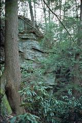 Kentucky Trail