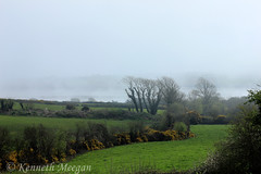 My Room with a view - Mist (Ken Meegan) Tags: myroomwithaviewmist myroomwithaview mist bannowbay saltmills cowexford ireland 842017