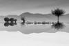 (B&W)Tranquil Reflection (JourneyIntoEye) Tags: monochrome blackandwhite bw lake water waterreflection upsidedown inversed landscape