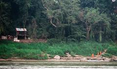 Mekong Riverbank (yemaria) Tags: monks laos luangprabang 湄公河 mekong mekongriver nikkor nikond800e yemaria
