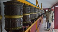 The Man on Monastery (aghiljv) Tags: old man monastry buddha buddhist manali himachal pradesh india white brown yellow gold red light blue stick jacket beanie nikond3200 nikon d3200