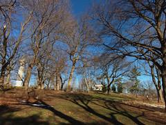 Ft. Greene Park, BK (cisc1970) Tags: fortgreene fortgreenepark brooklyn canonpowershots100 canon nyc fortgreeneparkconservancy