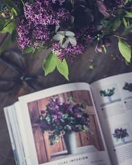April 05, 2017 (kelly ishmael) Tags: books flowers lilac stilllife