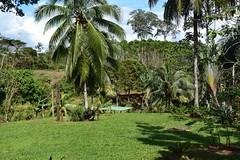 Lowlands of Costa Rica (anacm.silva) Tags: lagunadellagarto bocatapada costarica lowlands centralamerica landscape paisagem nature natureza naturaleza