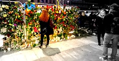 Stockholm 9:03 pm Sunday. (Papa Razzi1) Tags: 8987 2017 099365 stockholm sweden sunday aftermath ambience flowers mourning respect terroattack