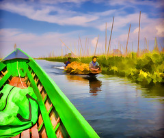 Farm workers on the floating gardens of Inle Lake