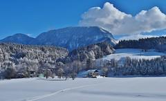 Austrian Winter Wonderland_060117_01 (DS 90008) Tags: snow winter austria trees mountans ice langkampfen