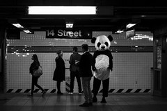 """14th Street"" (jenskrauer.com) Tags: newyorkcandid newyorkstreetphotography newyork ny nyc nystreet unionsquare 14thstreet black blackandwhite bianconero blackwhite bianco nero noir noirmood filmnoir street streetphoto streetphotography streetshot streetshooter monochrome subway york subwaycandidcandid photocandid xt2fuji xt2xf 56mm halloween nyhalloween panda jenskrauercom wwwjenskrauercom xphotographer xphotographers fujixphotographer fujifilm fuji streetcandid candid candidstreet candidstreetphotography"