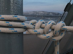 Name this knot (sue_p32) Tags: week12 52in2017 rope knots grey depthoffield