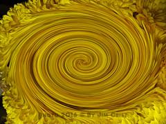 Twirl 23 (PhotosbyJim) Tags: twirl patterns