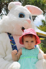 Easter Bunny 083