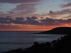 IMG_0122 (burgervdm1) Tags: lorne sunset