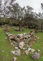 DSC_3582 (smülli) Tags: kreta crete hellas island mittelmeer mediterranian griechenland