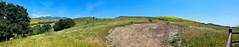 Green Hills and Mustard (EmperorNorton47) Tags: trabucocanyon california photo digital spring hills foothills road dirtroad mustard meadows