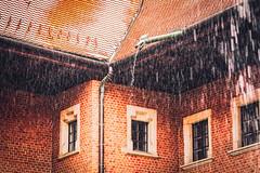 rainy morning (Smo_Q) Tags: poland cracow pentaxk3ii spring rain