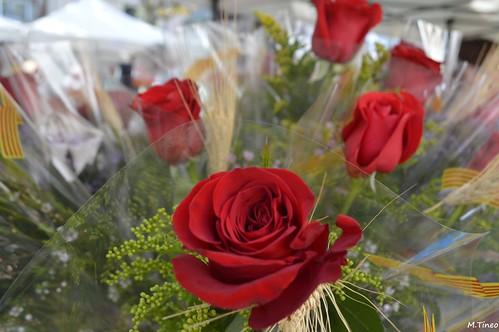 Diada de Sant Jordi dels Castellers d´Esplugues