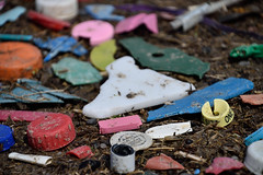 Bits and Pieces (Bad Alley (Cat)) Tags: pollution garbage waste plastic environment disaster sad colours colors trash litter refuse earthday colour color beach lake