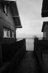 151227IMGP7762 (aureliedumartin) Tags: borddemer villages de pêcheurs cap ferret noir et blanc seaside