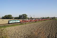 Pronti per Sabato prossimo?... (Maurizio Zanella) Tags: italia trains railways aw fs pavia trenitalia ferrovia treni pizzale e656481 arenaways exp13374