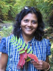 Vibha CWT 2013
