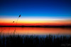 Sunset at Blankensee III (.vermilion) Tags: longexposure sunset lake germany landscape sonnenuntergang landschaft brandenburg langzeitbelichtung ndfilter blankensee neutraldensityfilter canonefs1855mmf3556 graufilter canoneos50d neutraldichtefilter
