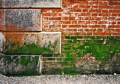 photo - Fort Point (Jassy-50) Tags: sanfrancisco california brick photo moss fort brickwall nhs fortpoint ftpoint nationalhistoricsite