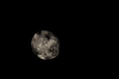 Moon (Kevin Baird) Tags: moon moonrise gibbous waning waninggibbous