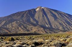 El Teide (letrucas) Tags: españa spain teide canaryislands ocaso lascañadasdelteide retamas isladetenerife teidepaisaje leandrotrujillocasañas