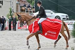 Burgturnier_2014-9940 (tokerpress) Tags: sport pferde 2014 sveta springreiten tokerpress burgturnier ctokerpress2011 noertenhardenberg ctokerpress2014 mai2014