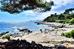 Cap d'Antibes (Damien RAMOS) Tags: mer nature eau pierre roche rivage cailloux océan