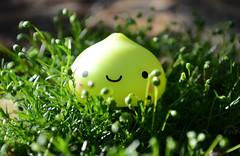 Plant Lover (Ceci ♥ Cuteness) Tags: cactus plant cute green japan toy moss bush ceci kawaii figure onsen lime cuteness blush needles spines kun dumpling manju