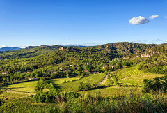 Les vignes courbes (Collabois) Tags: landscape vineyard view vine vert vignes hrault coteaux bdarieux nikond600