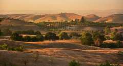 Paso Robles Distant View (Chuck Holland) Tags: california sunset mountains nature landscape vineyard dusk hills winecountry pasorobles