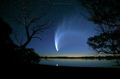 McNaughts Comet (john white photos) Tags: sky reflection beauty night time space tail australia journey astronomy comet southaustralia endless portlincoln wildlight rightsmanaged alamy mcnaughts mcnaughtscomet bigswamp