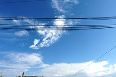 90042 Sky