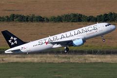 Austrian Airlines Airbus 320-214 OE-LBX (c/n 1735) Star Alliance colors. (FNF_VIENNA - Vienna-Aviation.net) Tags: vienna star airport airbus airlines vie austrian a320 alliance 320 schwechat loww oelbx