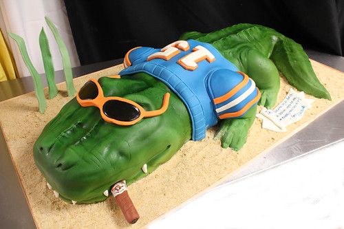 Alligator cake in sand Cake