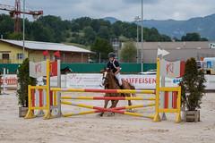DSC04798_s (AndiP66) Tags: horse macro sports sport schweiz switzerland jumping sony july sp di if juli alpha tamron concours pferd equestrian f28 solothurn ld horsejumping 70200mm wettbewerb 2014 springen kantonsolothurn balsthal springreiten cantonsolothurn andreaspeters pferdespringen 77m2 a77ii ilca77m2 77ii 77markii slta77ii